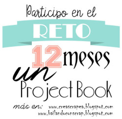 Projecto 12 meses